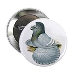 "English Trumpeter Opal 2.25"" Button"