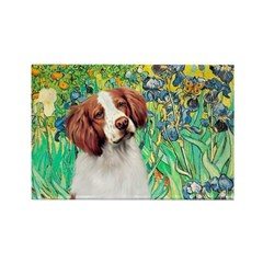 Irises/Brittany Rectangle Magnet