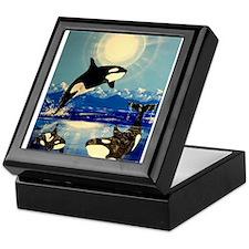 Cute Orca Keepsake Box