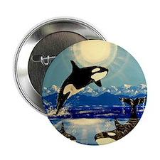 """Cute Orca whales 2.25"""" Button"""