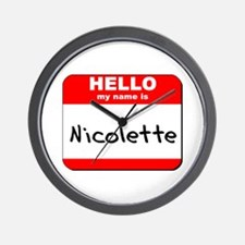 Hello my name is Nicolette Wall Clock