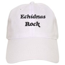 Echidnass rock Baseball Cap