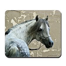 Caspain Horse Mousepad