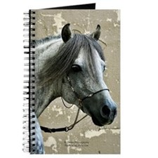 Caspain Horse Journal