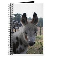 Unique Foal Journal