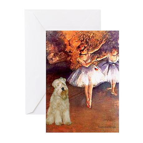 Dancer1/Wheaten T (7) Greeting Cards (Pk of 20)