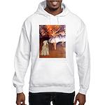Dancer1/Wheaten T (7) Hooded Sweatshirt