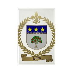 BREAU Family Crest Rectangle Magnet
