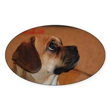 Dog-puggle Oval Decal