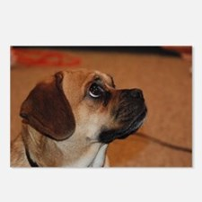 Dog-puggle Postcards (Package of 8)
