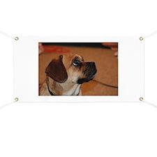 Dog-puggle Banner