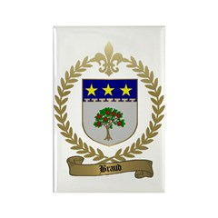 BRAUD Family Crest Rectangle Magnet