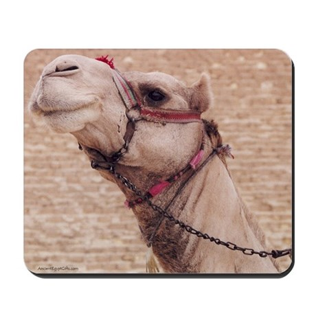 Egyptian Camel Photo Mousepad