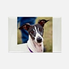 Pacino Rectangle Magnet (100 pack)