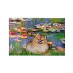 Lilies2/Pomeranian #4 Rectangle Magnet (10 pack)