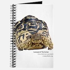 Leopard Tortoise Journal