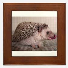 Licker on Pickers! Framed Tile