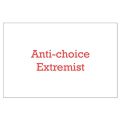 Anti-Choice Extremist Posters