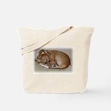 Funny Italian greyhound Tote Bag