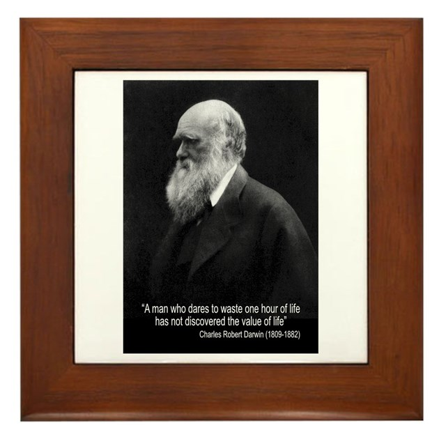 Darwin Quotes: Charles Darwin Quotes Framed Tile By Evolveshop