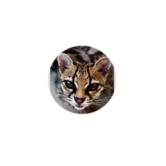 Margay Mini Button