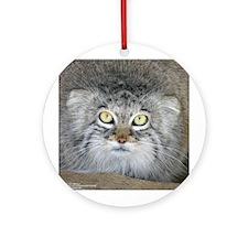Pallas' Cat Ornament (Round)