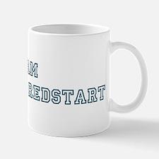 Team American Redstart Mug