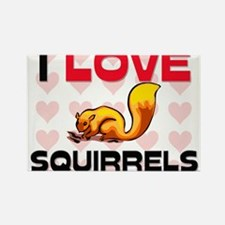 I Love Squirrels Rectangle Magnet