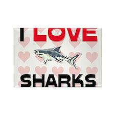 I Love Sharks Rectangle Magnet