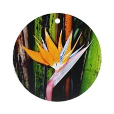 Bird of Paradise - Ornament (Round)