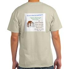 Be Responsible Ash Grey T-Shirt