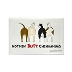 Nothin' Butt Chihuahuas Rectangle Magnet (100 pack