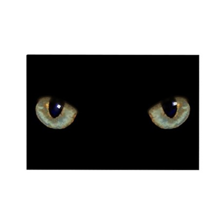Cat Eyes Rectangle Magnet
