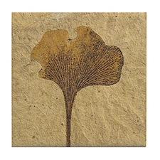 Ginko Biloba Leaf Fossil Tile Coaster