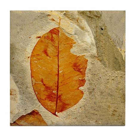 Red Amber Leaf Fossil Tile Coaster By Oshishop