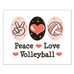 Peace Love Volleyball Small Poster