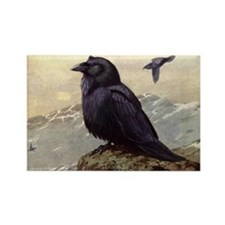 Mysterious RAVEN Crow Rectangle Magnet