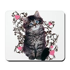 Little Fuzzy Kitten Mousepad