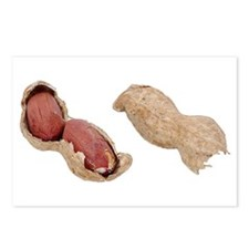 A Peanut On Your Postcards (Package of 8)