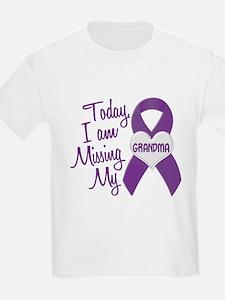 Missing My Grandma 1 PURPLE T-Shirt