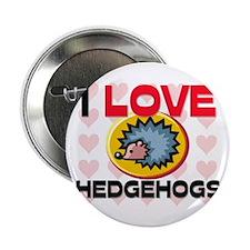 "I Love Hedgehogs 2.25"" Button"