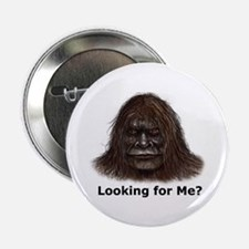 """Looking for Me?"" Button"