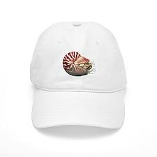 Chambered Nautilus Baseball Cap