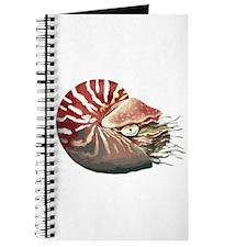 Chambered Nautilus Journal