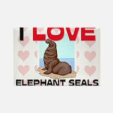 I Love Elephant Seals Rectangle Magnet