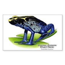 Dyeing Poison Dart Frog Rectangle Decal