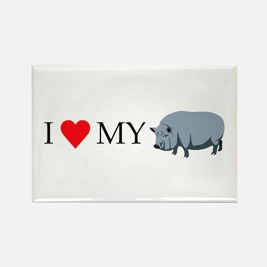 I Love My Pot Bellied Pig (1) Rectangle Magnet