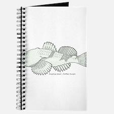 Sculpin Journal