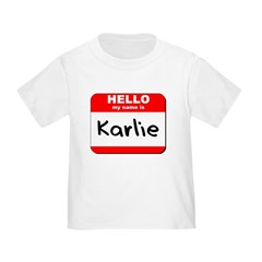 Hello my name is Karlie T