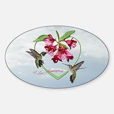 I love hummingbirds Oval Decal